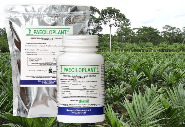 paeciloplant